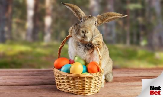 Eier, Eier und noch mehr Eier