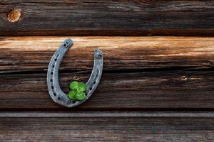 horse shoe, lucky charm, luck